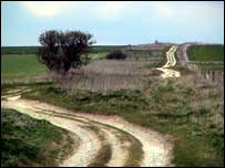 The Ridgeway at Overton. April 2003